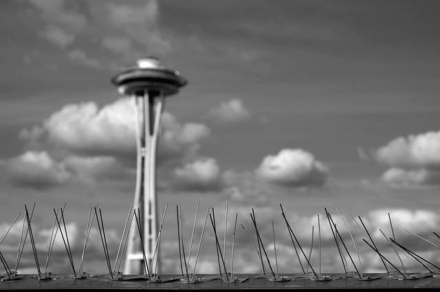Mejor Adoquines de Ladrillo en Seattle, Washington