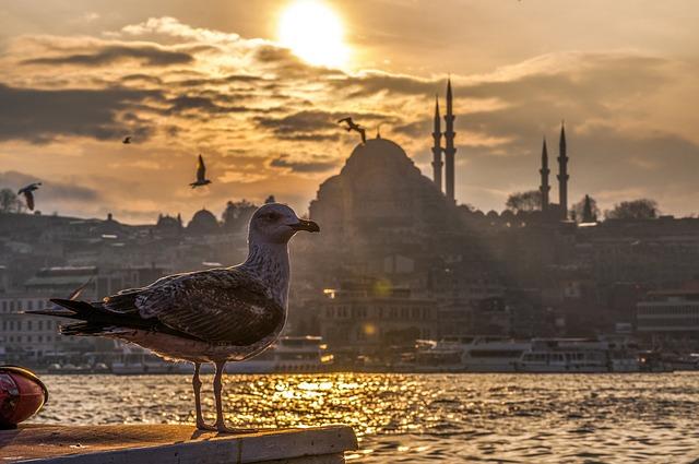 Razones para Invertir en el Auge del Mercado Inmobiliario de Estambul