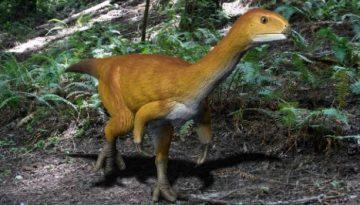 chilesaurus-dinosaur