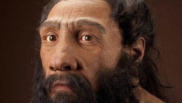neanderthalensis_JG_Recon_Head_CC_3qtr_lt_sq