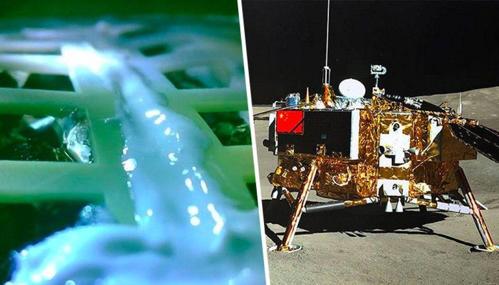 China crece las primeras plantas en la Luna